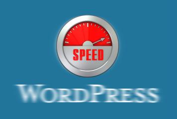 Caching von Menüs in WordPress